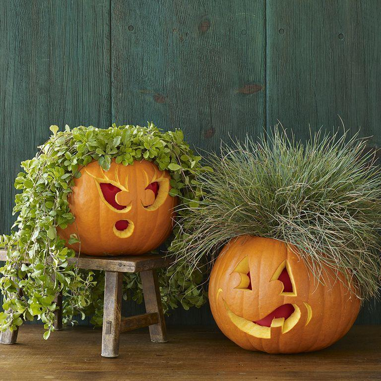 "<p>Not all Jack-o-Lanters have to be absolutely terrifying — some can be funny and wear wigs made out of leaves.</p><p><em><strong><a href=""https://www.womansday.com/home/crafts-projects/a28690051/plant-people-pumpkins/"" rel=""nofollow noopener"" target=""_blank"" data-ylk=""slk:Get the Plant People tutorial."" class=""link rapid-noclick-resp"">Get the Plant People tutorial.</a></strong></em></p>"