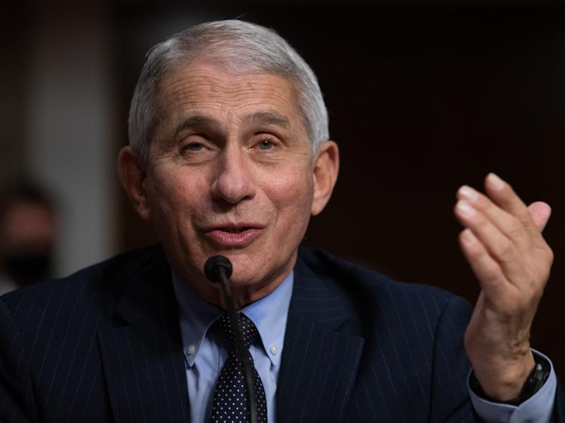 Trump reportedly slammed Anthony Fauci as 'a disaster' on a campaign phone call