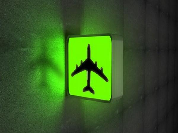 IATA has condemned actions of Belarus government and called for independent investigation.