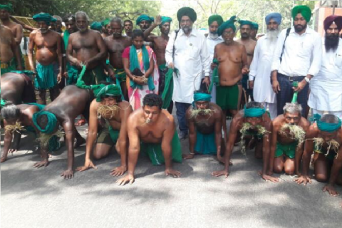 TN farmers go down on all fours, say they've been reduced to animals on Day 36 of protests