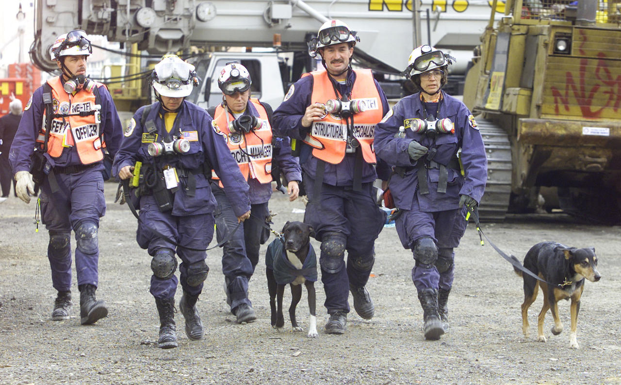 "A group of rescue workers with dogs leave the ""ground zero"" site of the World Trade Center in New York City, September 29, 2001. (REUTERS/Jeff Christensen)"