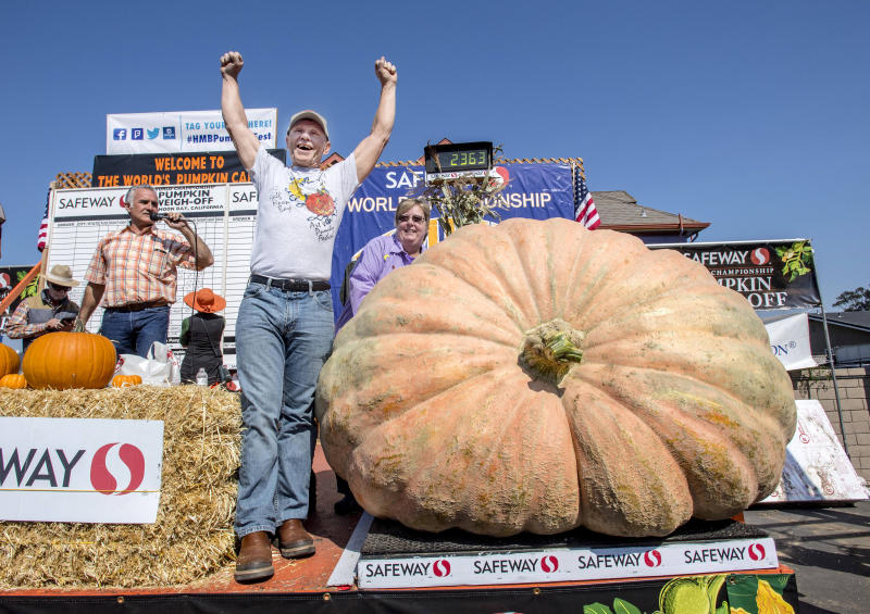 Joel Holland throws his arms into the air after winning the 44th World Championship Pumpkin Weigh-Off in Half Moon Bay, Calif., on Monday, Oct. 9, 2017. Holland's pumpkin weighed in at 2363 pounds. (Mark Rightmire/The Orange County Register via AP)
