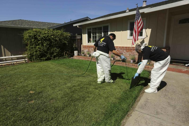 Green Canary workers Mariano Bucio (L) and Shahbaz Zadeh apply a diluted concentrate of aqueous pigment to the front lawn of a home in San Jose, California July 24, 2014. The company said it uses the coloring application to improve property value, conserve water, and reduce maintenance costs. REUTERS/Robert Galbraith (UNITED STATES - Tags: ENVIRONMENT)