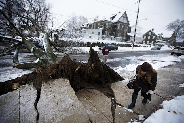 A woman ducks under an utility line next to an ice covered downed tree that landed atop a minivan, after a winter storm Wednesday, Feb. 5, 2014, in Philadelphia. Icy conditions have knocked out power to more than 200,000 electric customers in southeastern Pennsylvania and prompted school and legislative delays as well as speed reductions on major roadways. (AP Photo/Matt Rourke)