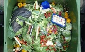 Don't blame families for food waste