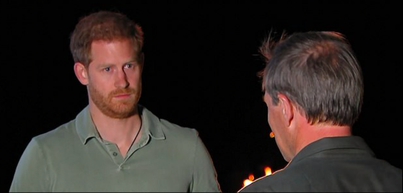 Prince Harry interview ITV documentary