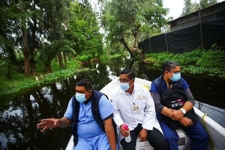Mexico, with over 500,000 coronavirus cases, to help with vaccine
