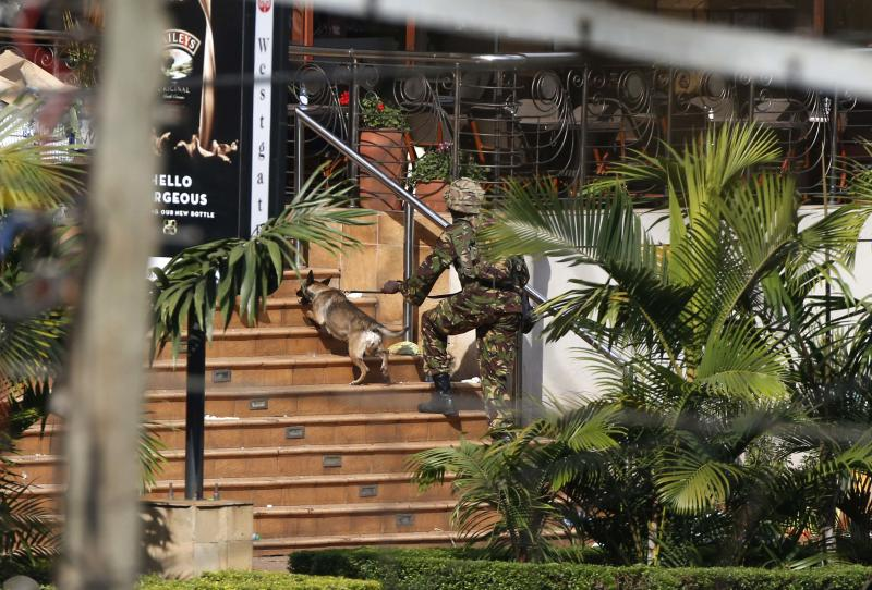 A Kenyan soldier holding a dog by its leash enters the main gate of Westgate Shopping Centre in Nairobi