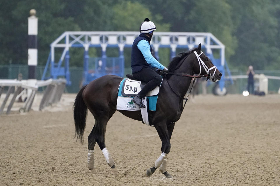 Bourbonic trains the day before the 153rd running of the Belmont Stakes horse race in Elmont, N.Y., Friday, June 4, 2021. (AP Photo/Seth Wenig)