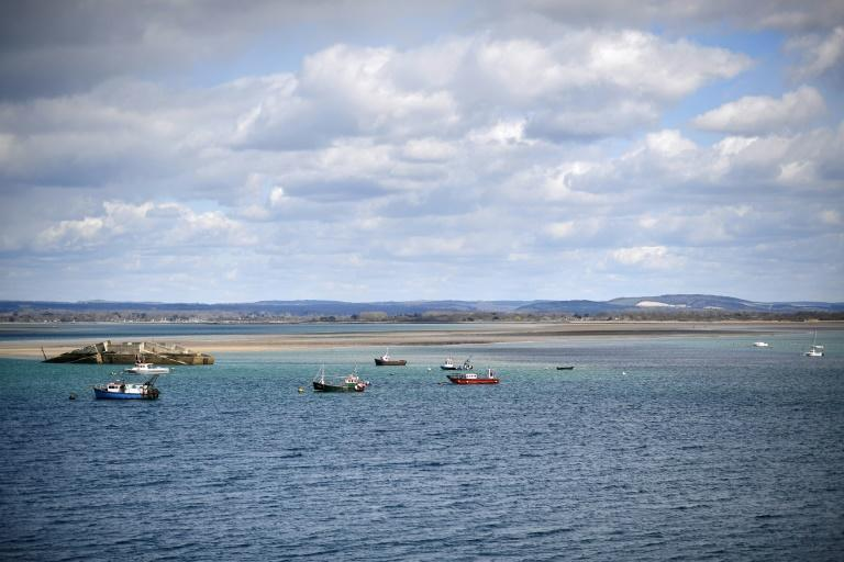 The Langstone Channel where the oysters will be released from the hatchery