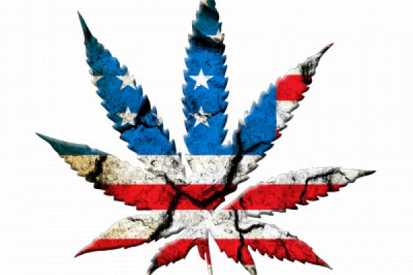 Curaleaf Teams With Veterans Cannabis Project Initiative, Reaches Oregon
