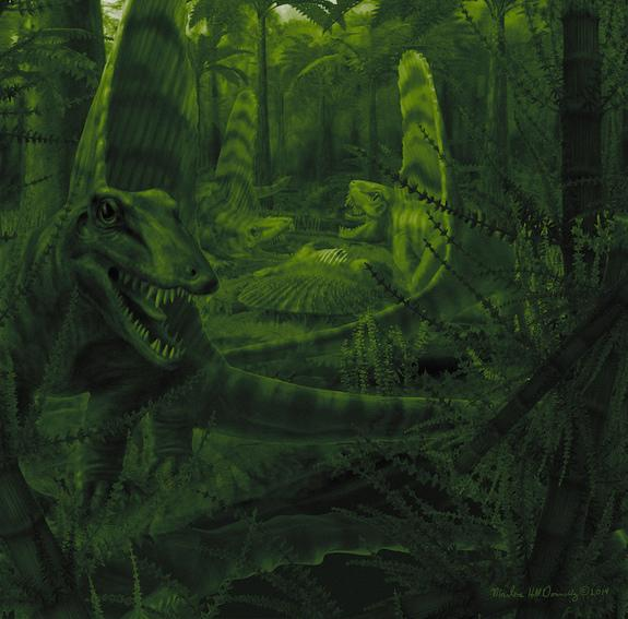 <em>Dimetrodon</em>, like several ancestors of modern mammals, may have been nocturnal, research suggests.