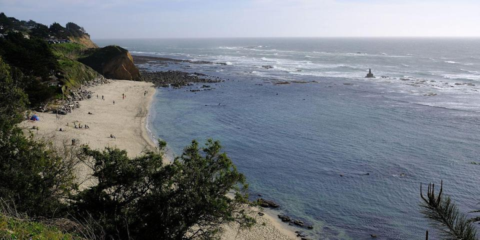 """<p><strong>Best for Tidepooling</strong><br></p><p>The California coast is known for its many tide pools, and the beach at <a href=""""https://go.redirectingat.com?id=74968X1596630&url=https%3A%2F%2Fwww.tripadvisor.com%2FAttraction_Review-g32747-d117208-Reviews-Fitzgerald_Marine_Reserve-Moss_Beach_California.html&sref=https%3A%2F%2Fwww.redbookmag.com%2Flife%2Fg37132327%2Ftop-california-beach-vacations%2F"""" rel=""""nofollow noopener"""" target=""""_blank"""" data-ylk=""""slk:James V. Fitzgerald Marine Reserve"""" class=""""link rapid-noclick-resp"""">James V. Fitzgerald Marine Reserve</a> in Moss Beach, 40 minutes south of San Francisco, is said to have some of the best. At low tide, a few of the sea critters you might spot include mussels, snails, urchins, and sea stars (keep in mind that collecting isn't permitted). </p><p><strong><em>Where to Stay: </em></strong><a href=""""https://go.redirectingat.com?id=74968X1596630&url=https%3A%2F%2Fwww.tripadvisor.com%2FHotel_Review-g32469-d1026733-Reviews-Oceano_Hotel_Spa_Half_Moon_Bay-Half_Moon_Bay_California.html&sref=https%3A%2F%2Fwww.redbookmag.com%2Flife%2Fg37132327%2Ftop-california-beach-vacations%2F"""" rel=""""nofollow noopener"""" target=""""_blank"""" data-ylk=""""slk:Oceano Hotel & Spa"""" class=""""link rapid-noclick-resp"""">Oceano Hotel & Spa</a>, <a href=""""https://go.redirectingat.com?id=74968X1596630&url=https%3A%2F%2Fwww.tripadvisor.com%2FHotel_Review-g32747-d115622-Reviews-Seal_Cove_Inn-Moss_Beach_California.html&sref=https%3A%2F%2Fwww.redbookmag.com%2Flife%2Fg37132327%2Ftop-california-beach-vacations%2F"""" rel=""""nofollow noopener"""" target=""""_blank"""" data-ylk=""""slk:Seal Cove Inn"""" class=""""link rapid-noclick-resp"""">Seal Cove Inn</a></p>"""