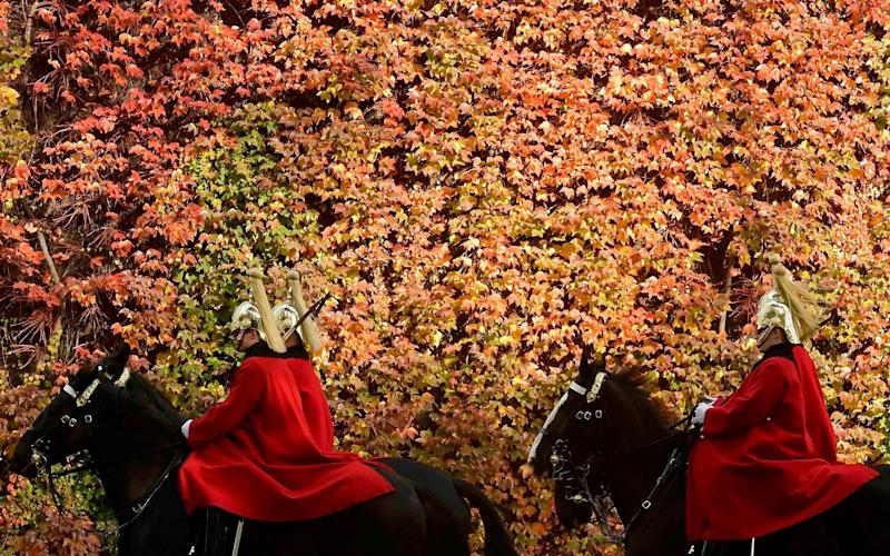 Members of the Household Cavalry ride past autumn foliage in central London last year - REUTERS/Toby Melville