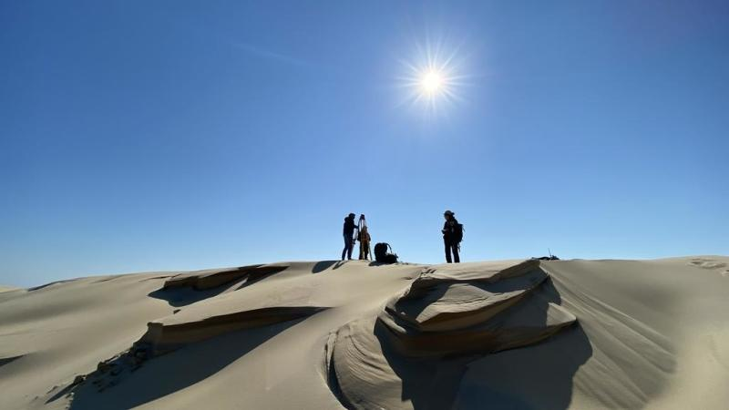 Europe's highest sand dune, France's Dune du Pilat, is now blowing in the wind, say scientists
