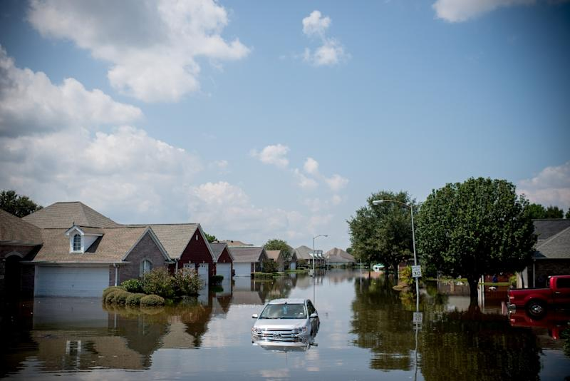 Analysts say hurricanes typically depress short-term growth, but the hit is made up for later as rebuilding fuels economic activity (AFP Photo/Emily Kask)