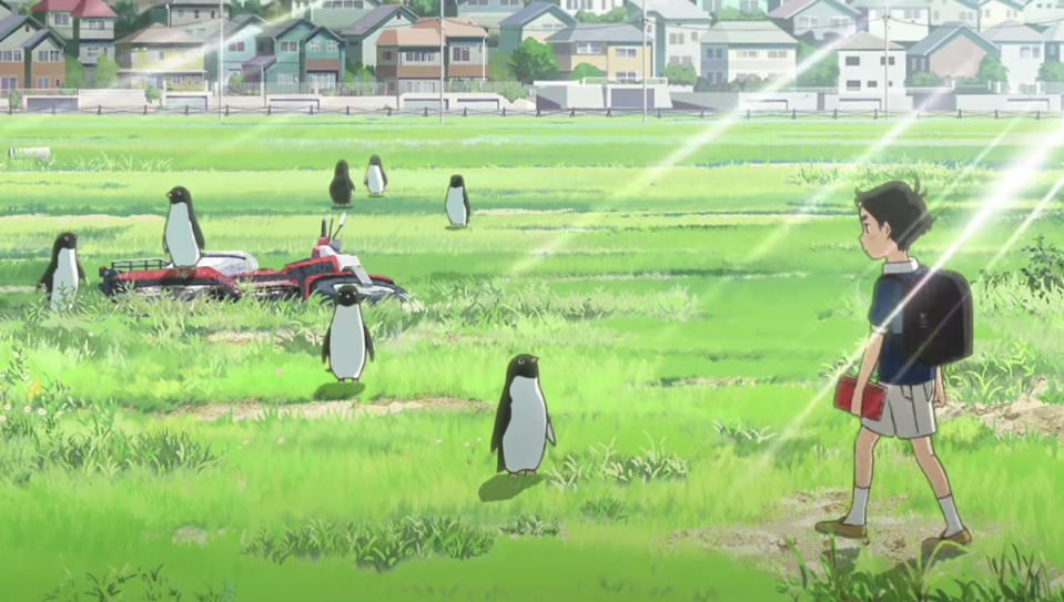 'Penguin Highway' is new to streaming this week. (Studio Colorido)
