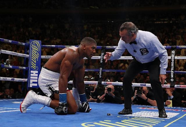 Anthony Joshua suffered a shock defeat to Andy Ruiz Jr (AFP Photo/AL BELLO)