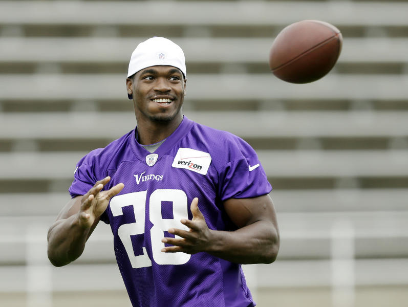 Minnesota Vikings Running Back Adrian Peterson Catches The Ball During NFL Football Training Camp Friday