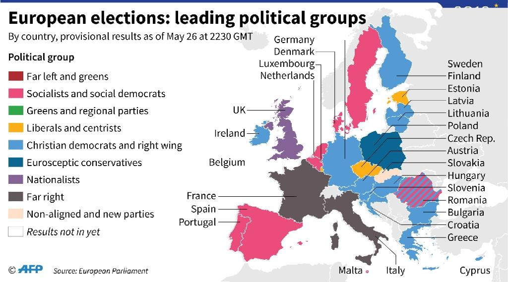 Provisional European Parliament election results: leading political group per country as of May 26, 2230 GMT (AFP Photo/Thomas SAINT-CRICQ)