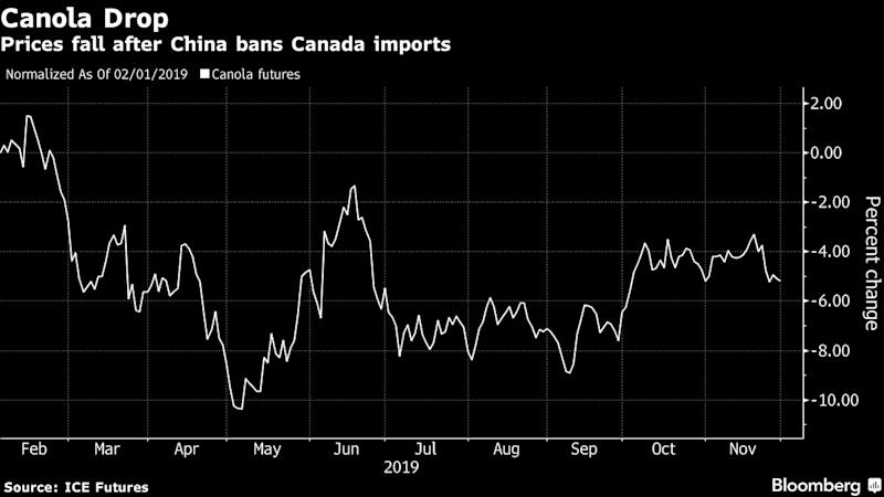 Canadian Canola Growers Are Getting Used to Life Without China