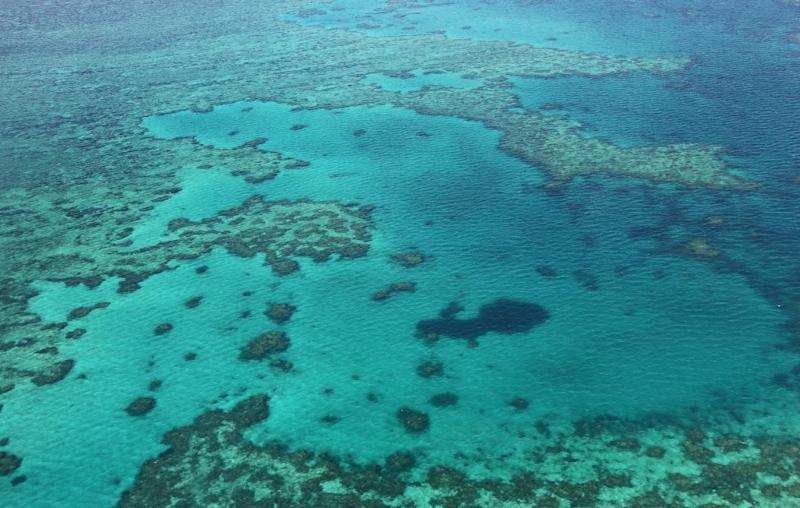 An aerial view of the Great Barrier Reef off the coast of the Whitsunday Islands, along the central coast of Queensland, pictured on November 20, 2014