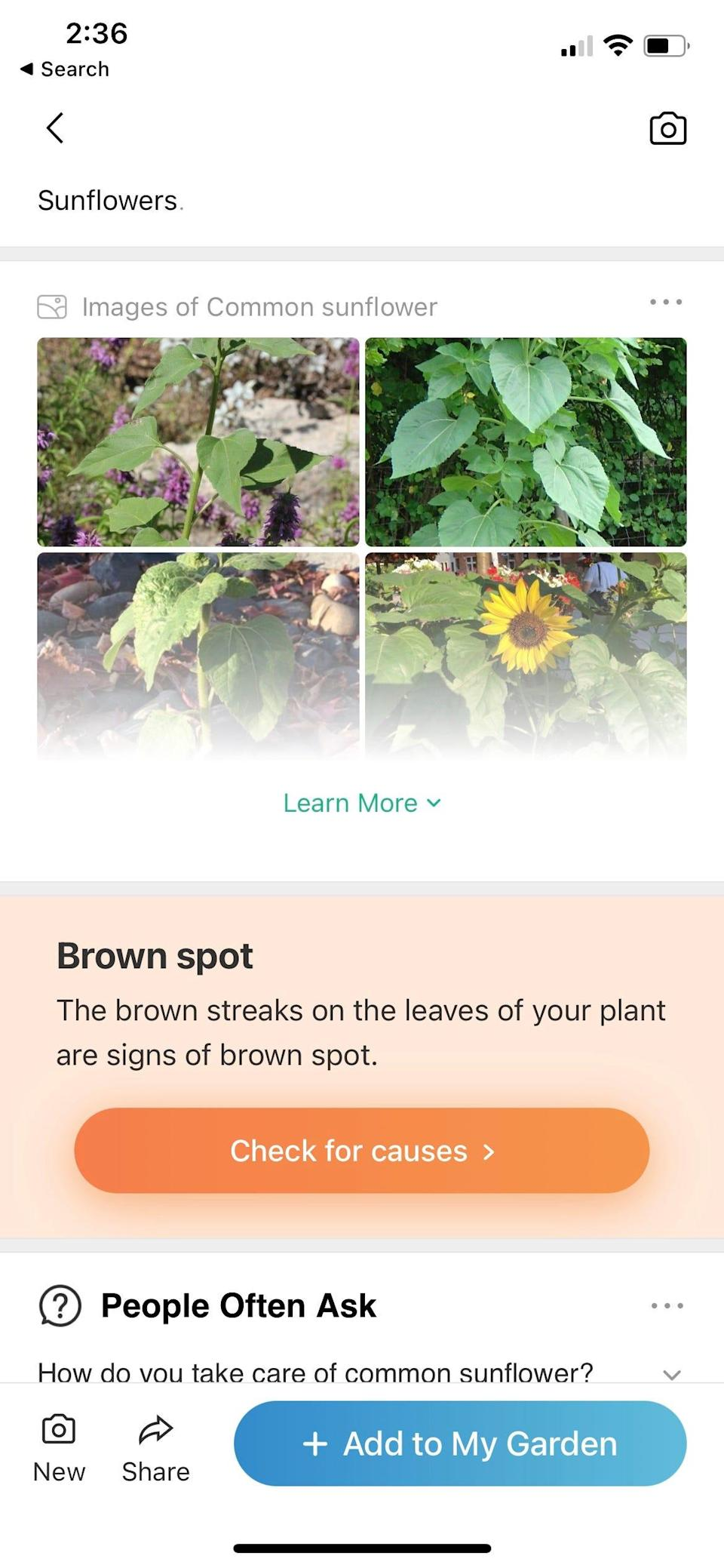 Are you a novice gardener? Turn your black thumb green by using the PictureThis app to identify plants. Its database offers 98% accuracy.