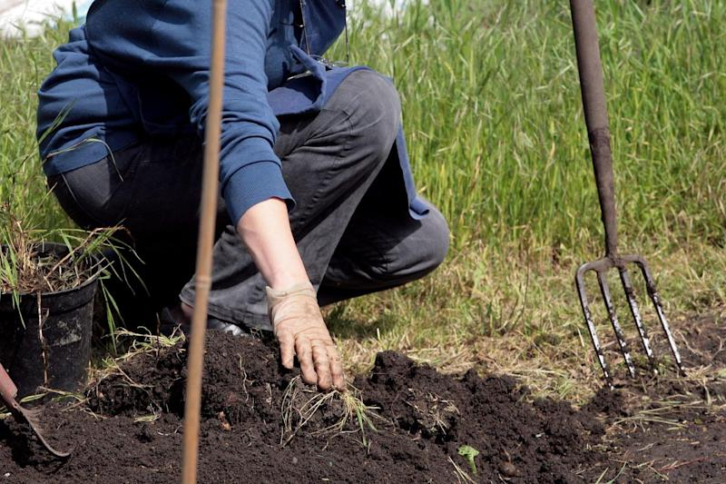Washington becomes first US state to allow human composting