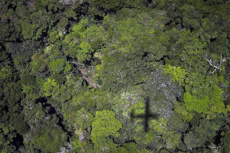 An overhead view of the trees in the Amazon forest on October 14, 2014 in Brazil