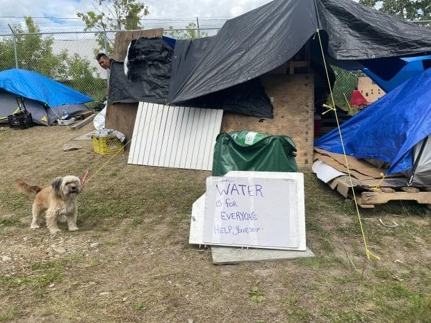Volunteers are distributing water and other supplies to people living in a homeless encampment in Prince George, B.C. The city says the camp must be shutdown by June 27 as Environment Canada forecasts highs of 38 C. (Andrew Kurjata/CBC - image credit)