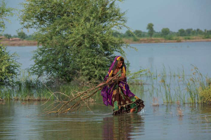 Surta crosses the floodwater carrying wood for cookingWFP/Arete/Saiyna Bashir
