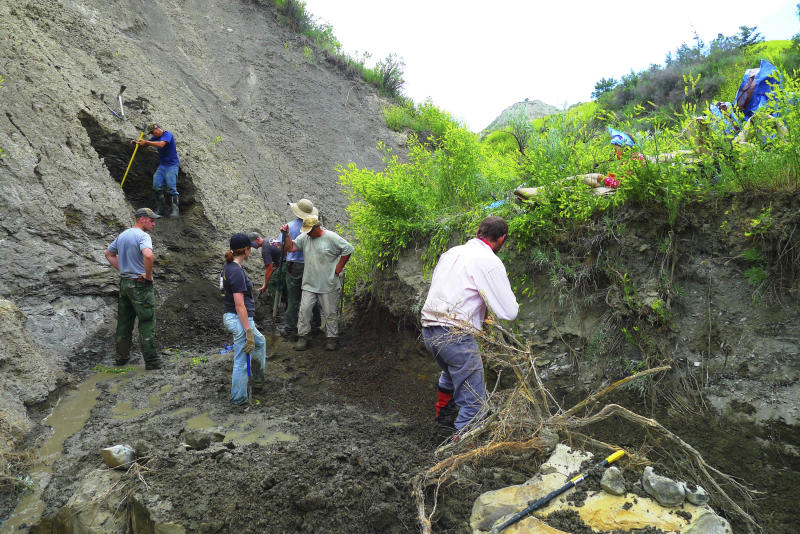 This July 7, 2011 photo provided by the U.S. Fish and Wildlife Services shows workers and paleontologists move dirt to keep the creek flowing, a constant challenge at a dig site for a fossil found in Montana nearly seven years ago that has led to the discovery this new species of prehistoric sea creature. The new species of elasmosaur is detailed in an article published Thursday, April 13, in the Journal of Vertebrate Paleontology. The creature lived about 70 million years ago in the inland sea that flowed east of the Rocky Mountains from Canada to the Gulf of Mexico. (Erin Clark / U.S. Fish and Wildlife Services via AP)