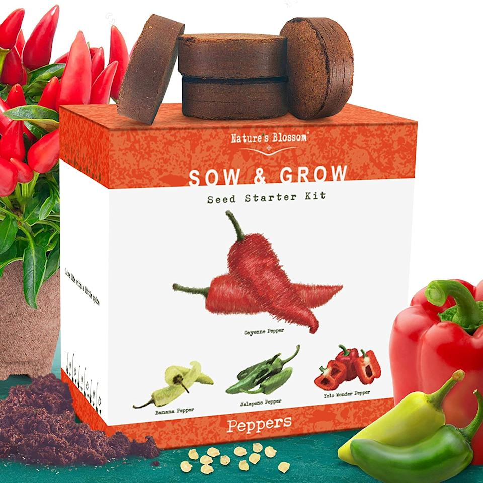 Nature's Blossom Sow & Grow Pepper Kit
