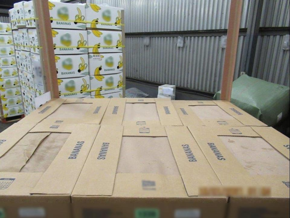Cocaine with a potential street value of around £76m was discovered hidden in a cargo of bananas at the Port of Southampton (PA)