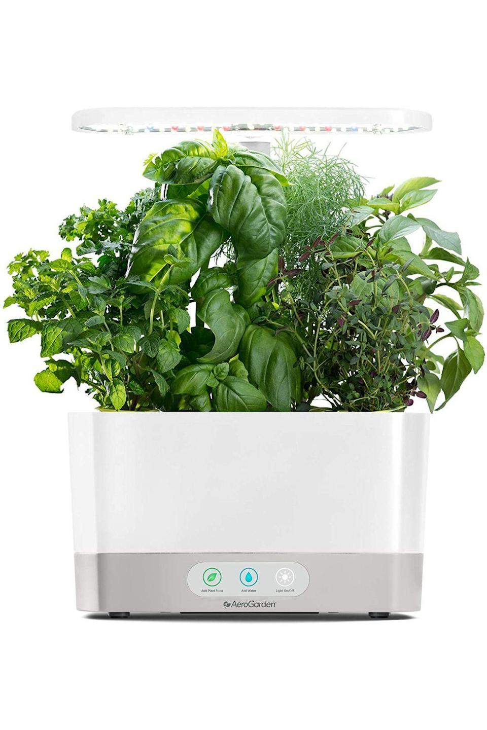 "<p><strong>AeroGarden</strong></p><p>amazon.com</p><p><strong>$99.97</strong></p><p><a href=""https://www.amazon.com/dp/B07CKNWHPQ?tag=syn-yahoo-20&ascsubtag=%5Bartid%7C10049.g.35221189%5Bsrc%7Cyahoo-us"" rel=""nofollow noopener"" target=""_blank"" data-ylk=""slk:Shop Now"" class=""link rapid-noclick-resp"">Shop Now</a></p><p>No one likes to buy new herbs all the time. Help your mom grow her own lil garden with this indoor planter, which has lights and tells you when to add water and food.</p>"
