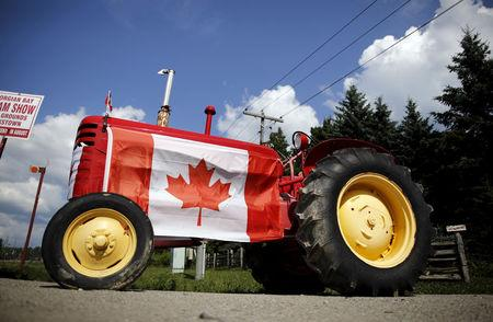 FILE PHOTO: Old tractor sporting a Canadian national flag is seen parked in the rural township of Oro-Medonte, Ontario