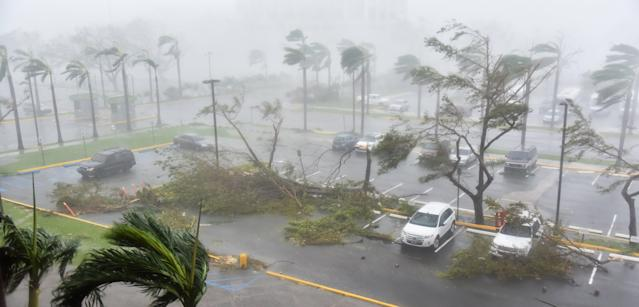 <p>Trees are toppled in a parking lot at Roberto Clemente Coliseum in San Juan, Puerto Rico, on Sept. 20, 2017, during the passage of the Hurricane Maria. (Photo: Hector Retamal/AFP/Getty Images) </p>