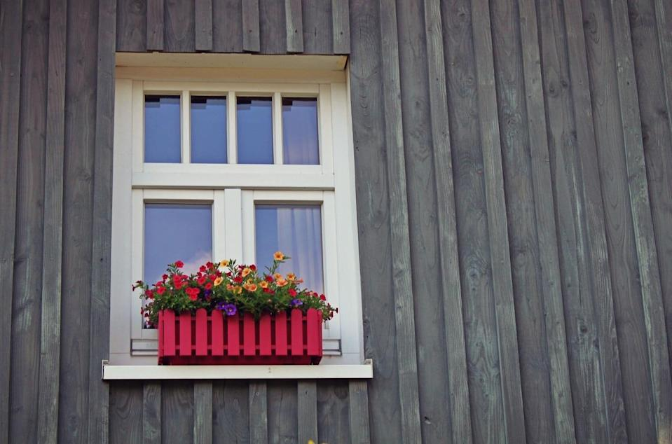 Get rid of anything that's preventing sunlight reaching your house. Plastic furniture set leaned up against your front wall? Window boxes? Move it. [Photo: Pexels]