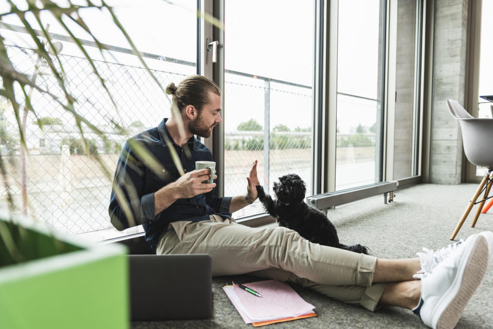 Pictured: Man working from home with puppy. Image: Getty