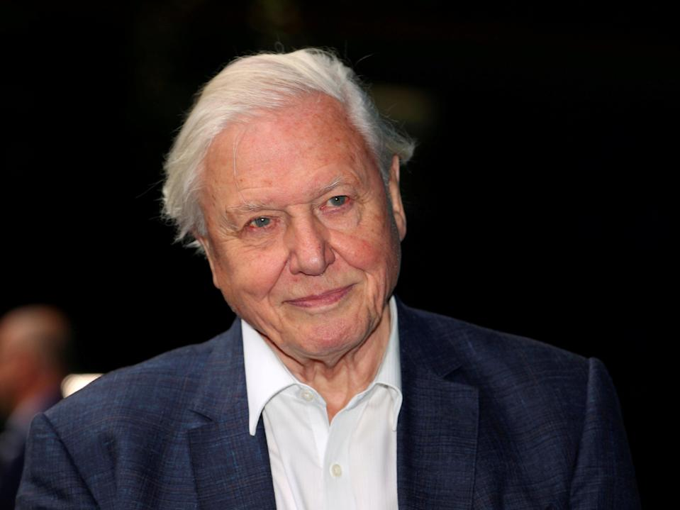 'In the end it has to be a political decision to save the world,' Sir David Attenborough told audiences watching the Wildscreen virtual film festival (REUTERS)