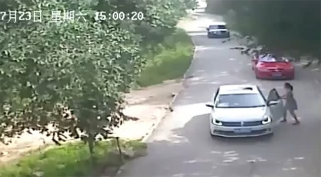 The daughter can be seen stepping out of the car in Badaling Wildlife World. Source: LiveLeak