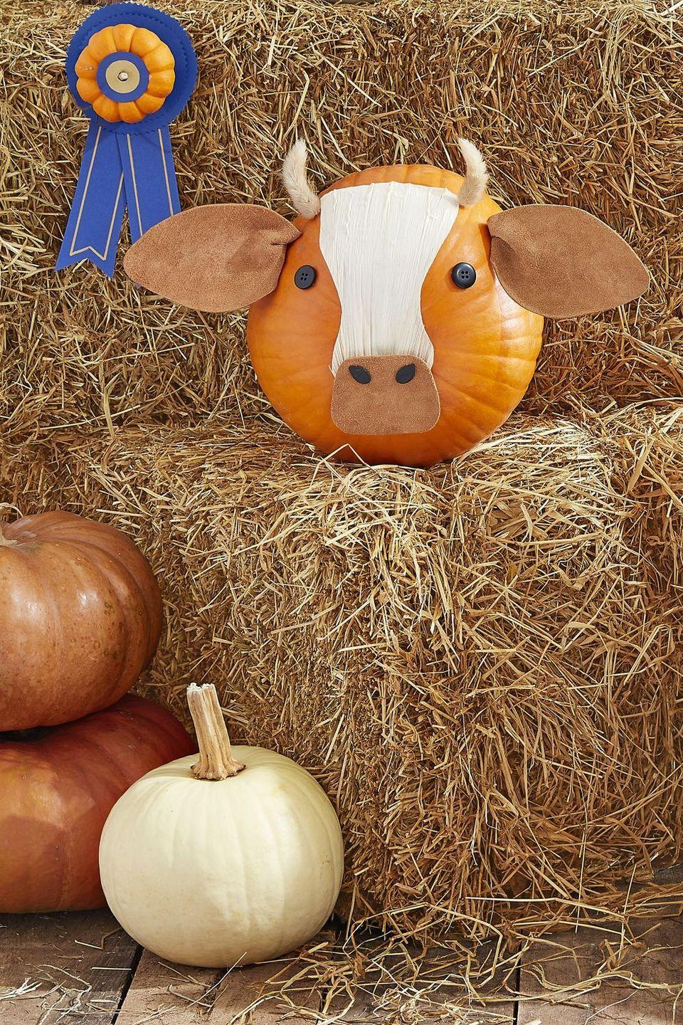 """<p>We dare you do find a mooo-re adorable pumpkin. Start by downloading, tracing, and cutting out these <a href=""""https://hmg-prod.s3.amazonaws.com/files/pumpkin-carving-template-cow-ears-1018-1536169820.pdf"""" rel=""""nofollow noopener"""" target=""""_blank"""" data-ylk=""""slk:cow ear and nose templates"""" class=""""link rapid-noclick-resp"""">cow ear and nose templates</a> onto brown leather. Repeat with this <a href=""""https://hmg-prod.s3.amazonaws.com/files/pumpkin-carving-template-cow-1018-1536169820.pdf"""" rel=""""nofollow noopener"""" target=""""_blank"""" data-ylk=""""slk:forehead pattern"""" class=""""link rapid-noclick-resp"""">forehead pattern</a> on a corn husk. Hot-glue ears, nose, and forehead to the bottom of a pumpkin. Paint two pumpkin seeds with black craft paint. Hot-glue the seeds for nostrils, black buttons for eyes and dried bunny tail grass tops for horns.</p>"""
