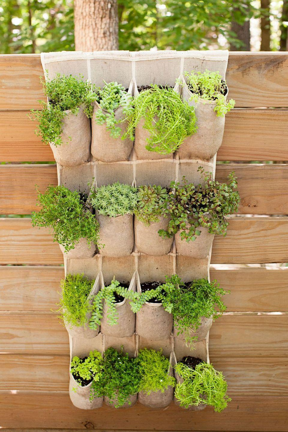 <p>Find an over-the-door shoe organizer that matches your aesthetic (linen works best!) and attach it to your fence for a space-saving herb garden. Stick a different kind of herb in each compartment, and then add labels to help you keep track of what's what.</p>