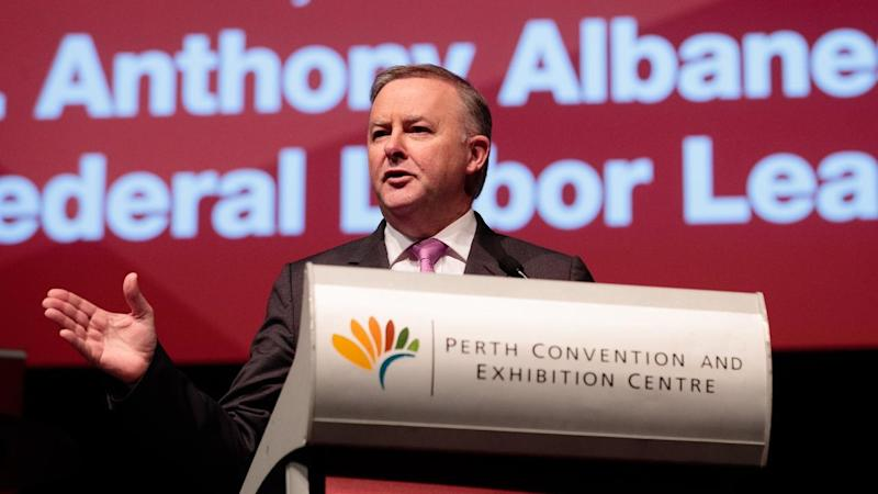 Anthony Albanese will have to reshape the ALP in response to Labor's 2019 election post-mortem