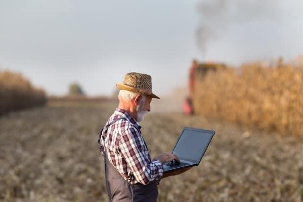 There's a rural/urban digital divide when it comes to internet access — and advocates say the pandemic has made it an even more pressing issue for federal parties to address. (Budimir Jevtic/Shutterstock - image credit)