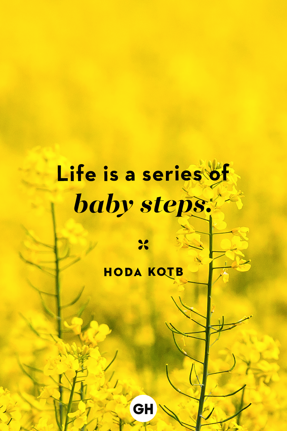 <p>Life is a series of baby steps.</p>