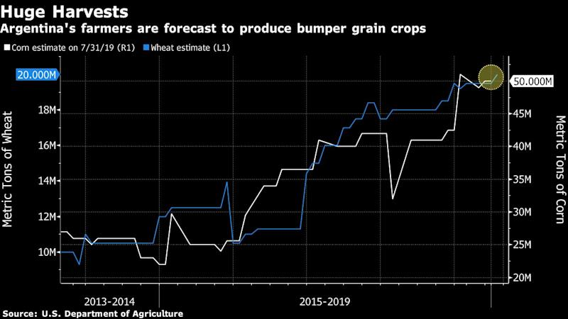(Bloomberg) -- Terms of Trade is a daily newsletter that untangles a world embroiled in trade wars. Sign up here.Argentina's next leader will have a tough task sorting out a stumbling economy, but surging farm and oil production could offer a helping hand.The nation's farmers are forecast to push harvests to new highs in 2020, bringing in much-needed dollars. Meanwhile, rising oil production from shale fields should bolster fuel exports, reining in an energy trade deficit.The prospect for growth bodes well for both market-friendly President Mauricio Macri and opposition leader Alberto Fernandez, who would probably shift Argentina to the left. They face a critical primary vote on Aug. 11 before the October presidential election.CropsThe wheat crop begins to roll into ports at the end of the year. It's set to top 20 million metric tons for the first time.Then there's corn. Growers haven't begun planting the next crop, but a rally in prices and an export tax that's just a third of the levy on soybeans mean sowings may expand. Production could subsequently reach a record 51 million tons, according to the Rosario Board of Trade. More corn will reduce the share in fields of soybeans, Argentina's biggest farm export. Still, the U.S. Department of Agriculture sees a bumper soy crop of 53 million tons.Farm exports, which are priced in dollars, are key to shoring up the fragile peso, which in turn helps to control high inflation. Shipments are also a boost for tax revenue.WeatherFarming success depends on the weather. Fortunately for the next leader, who's sworn in on Dec. 10, forecasters are upbeat about the 2019-2020 season. That's because a neutral weather pattern or a weak El Nino are set to prevail over a strong El Nino or even-more-destructive La Nina. Both of the former scenarios would bring mild conditions, conducive for plants on the Pampas growing belt.Look no further than the current calendar year to see the results of good weather. Exports of crops that benefited 