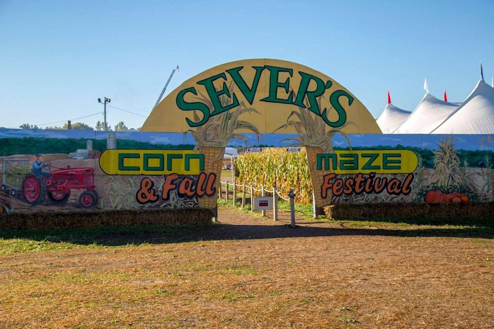 """<p>Once you've completed <a href=""""https://www.seversfallfestival.com/"""" rel=""""nofollow noopener"""" target=""""_blank"""" data-ylk=""""slk:Sever's 2021 adventurer-themed corn maze"""" class=""""link rapid-noclick-resp"""">Sever's 2021 adventurer-themed corn maze</a> (look for the """"Scuba Sever"""" on your journey for a chance to win their grand prize), be sure to check out the Shakopee, Minnesota, establishment's plethora of pumpkins, corn pit, tractor rides, and the dozens of kid-friendly carnival rides they have on site. </p><p><a class=""""link rapid-noclick-resp"""" href=""""https://go.redirectingat.com?id=74968X1596630&url=https%3A%2F%2Fwww.tripadvisor.com%2FAttractions-g43519-Activities-Shakopee_Minnesota.html&sref=https%3A%2F%2Fwww.countryliving.com%2Flife%2Ftravel%2Fg22717241%2Fcorn-maze-near-me%2F"""" rel=""""nofollow noopener"""" target=""""_blank"""" data-ylk=""""slk:PLAN YOUR TRIP"""">PLAN YOUR TRIP</a> </p>"""