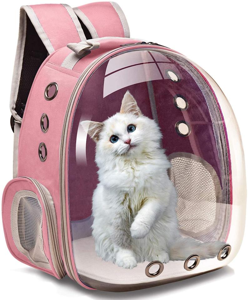 """<p>They can take their indoor cat on awesome adventures in this <a href=""""https://www.popsugar.com/buy/Henkelion-Pet-Carrier-Backpack-517996?p_name=Henkelion%20Pet%20Carrier%20Backpack&retailer=amazon.com&pid=517996&price=36&evar1=tres%3Aus&evar9=29246958&evar98=https%3A%2F%2Fwww.popsugar.com%2Flove%2Fphoto-gallery%2F29246958%2Fimage%2F45502044%2FHenkelion-Pet-Carrier-Backpack&list1=shopping%2Camazon%2Ccats%2Cwomen%2Cgift%20guide%2Camazon%20prime%2Cpets%2Cgifts%20for%20women&prop13=api&pdata=1"""" rel=""""nofollow"""" data-shoppable-link=""""1"""" target=""""_blank"""" class=""""ga-track"""" data-ga-category=""""Related"""" data-ga-label=""""https://www.amazon.com/Henkelion-Backpack-Cat-Carrying-Knapsack/dp/B07X7W5F3J/ref=sr_1_6?keywords=Pet+Backpack+capsule+cat+pink&amp;qid=1573777744&amp;s=pet-supplies&amp;sr=1-6"""" data-ga-action=""""In-Line Links"""">Henkelion Pet Carrier Backpack</a> ($36).</p>"""