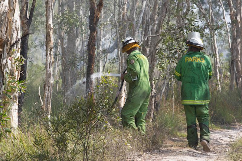 Firefighters extinguish spot fires in the suburb of Noosa North Shore, in Queensland.